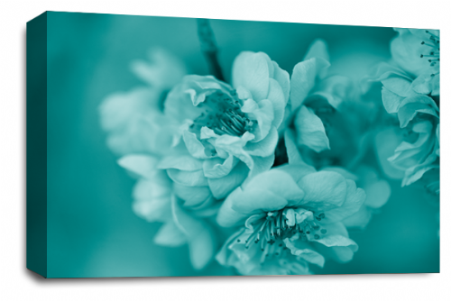 Floral Flower Wall Art Picture Teal Grey Spring Blossom Print